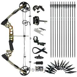 19-70lbs Archery Compound Bow Kits Target Hunting Set LH/RH Carbon Arrows Sets