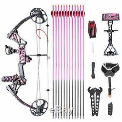 Archery Compound Bow Arrows Set Hunting Target 19-70lbs Right Handed Stabilizer