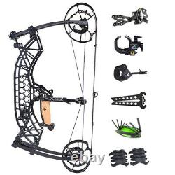 Compound Bow 35-65lbs Steel Ball Short Axis Archery Arrows Hunting Right Left