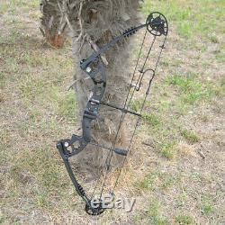 Compound Bow Carbon Arrows Set 30-55lbs Adjustable Archery Shooting Hunting