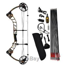Right Handed Archery Compound Bow and Arrow Set Target/Hunting Adult 19-70Lbs